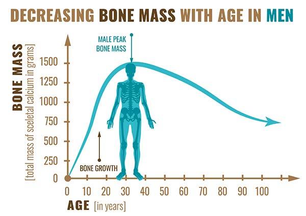 bone mass in women graphic